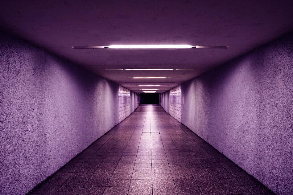 purple drank walls